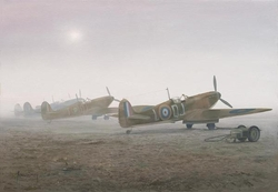 Merlins In The Mist<br> by Robin Smith