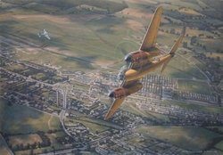 Merlins Over Hatfield <br> By Ronald Wong<br>