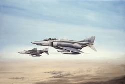 Mutual Support - RF4C Phantom<br>