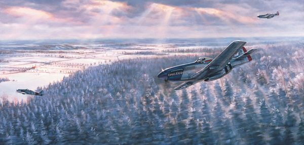 Preddy's P-51 <br> By Jim Laurier