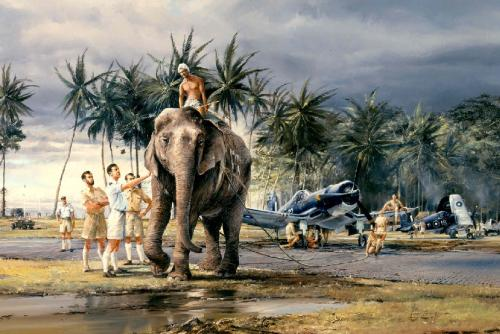 Puttalem Elephants<br> By Robert Taylor
