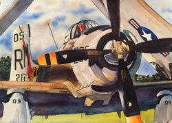 "<big><center> ""Skyraider"" by Walt Costilow</big></center>"