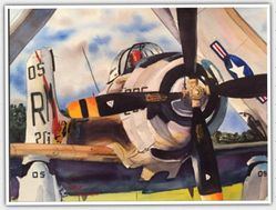 <big><Center> �Skyraider� by Walt Costilow</big></center>