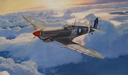 LATE IN THE DAY - SPITFIRE by STEVE HEYEN - ORIGINAL