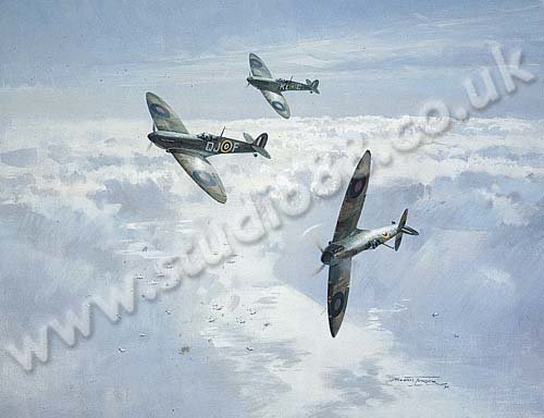 Spitfires In The Sunshine<br> By Michael Turner<br>