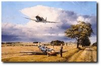"""Summer Victory <br>By Robert Taylor<br><b style= """"color: blue; font-weight:bold,"""">           Battle of Britain Trilogy</b>"""