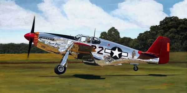 """Tuskegee Ace  By Sam Lyons <br>  <b style=""""color:red;font-weight: bold;"""">   TUSKEGEE AIRMEN </b>"""