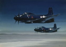 Two A-2 Ds <br>