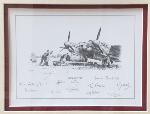 "<big>""Vital Support"" by Robert Taylor<br> Framed with fabric from the Mosquito prototype W4050"