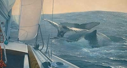 Voyagers - Humpback Whale<br>