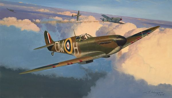 WING COMMANDER GIBBES IN HIS SPITFIRE MK 8 by STEVEN HAYEN: ORIGINAL