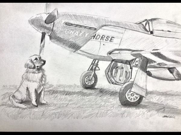 """<b style= """"color: blue;font-weight:bold,"""">""""Your Plane, Your Pet"""" by Janet Archibald<br>Commission Your Own Original Painting"""