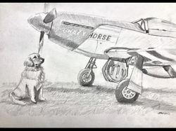 "<b style= ""color: blue;font-weight:bold,"">""Your Plane, Your Pet"" by Janet Archibald<br>Commission Your Own Original Painting"