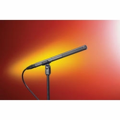 "AUDIO-TECHNICA AT897 Line + gradient microphone, 11.0"" long"
