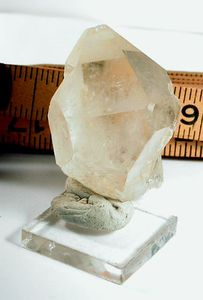 SOLD: Arkansas Golden Healer Hera Crystal