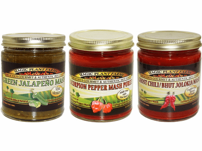 Aged Chili Pepper Mash Sampler Pack (3 Varieties)