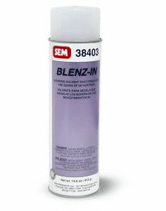 SEM 38403 - BLENZ-IN 1/ea 20oz can