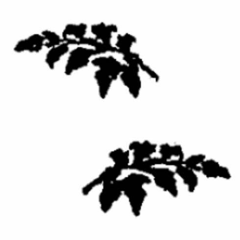 Branch Cover Set