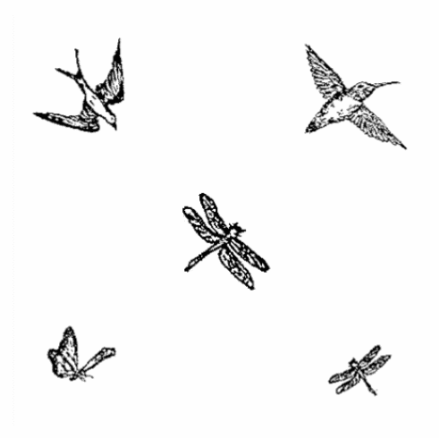 Flying Set - Small