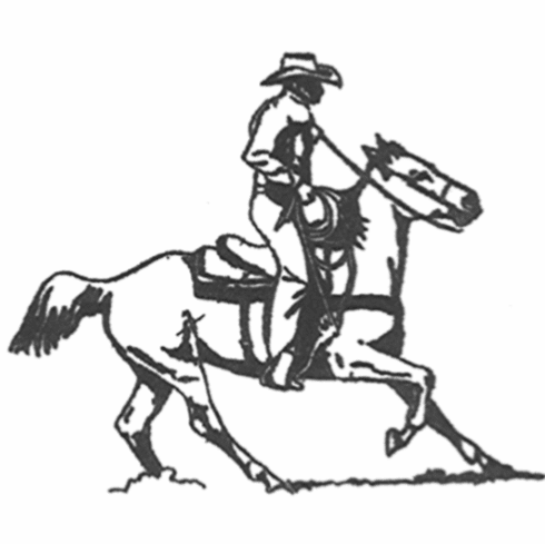 Stopping Cowboy