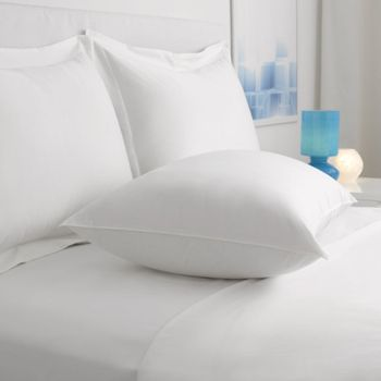 Everlasting Loft EcoSmart Down-Alternative Pillows with Clearfresh Antimicrobial