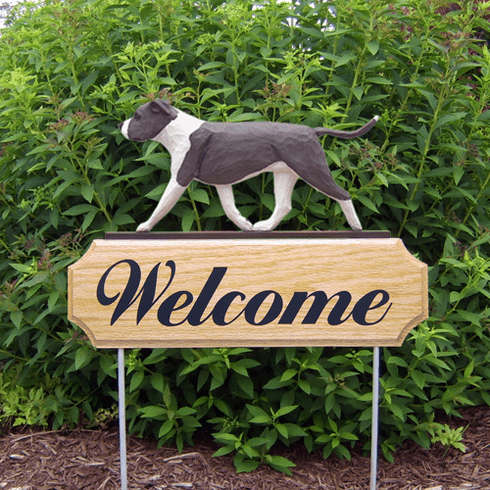 Am. Staffordshire Terrier (natural) DIG Welcome Stake-Blue/White