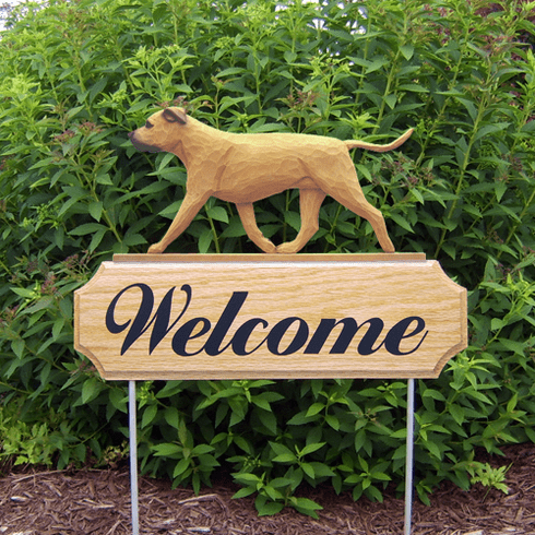 Am. Staffordshire Terrier (natural) DIG Welcome Stake-Fawn