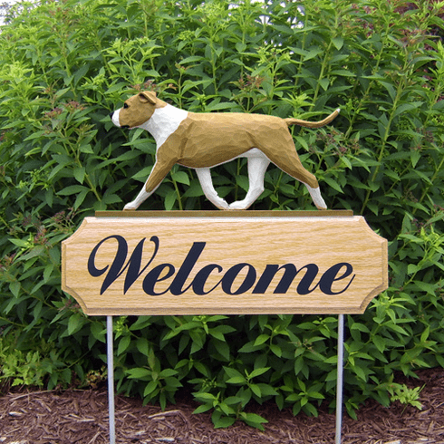 Am. Staffordshire Terrier (natural) DIG Welcome Stake-Fawn/White