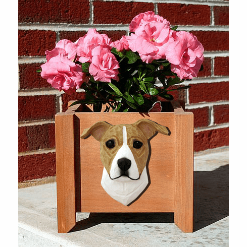 American Staffordshire Terrier Natural Planter Box