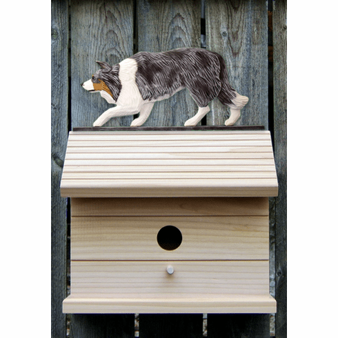 Border Collie Bird House-Blue Merle