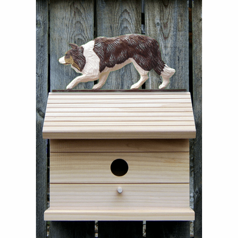 Border Collie Bird House-Red Merle