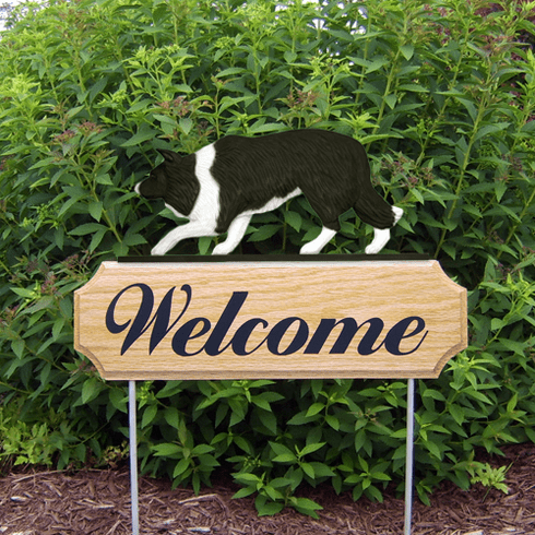 Border Collie DIG Welcome Stake-Black