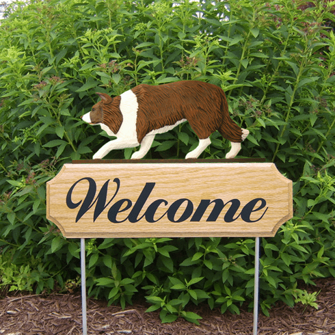 Border Collie DIG Welcome Stake-Red
