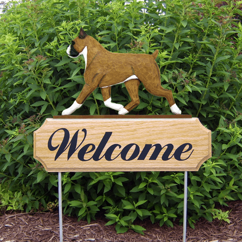 Boxer DIG Welcome Stake-Fawn