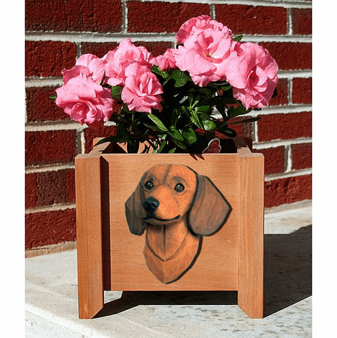 Dachshund Smooth Planter Box
