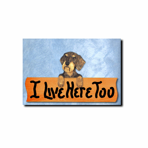 Dachshund Wirehair I Live Here Too Sign