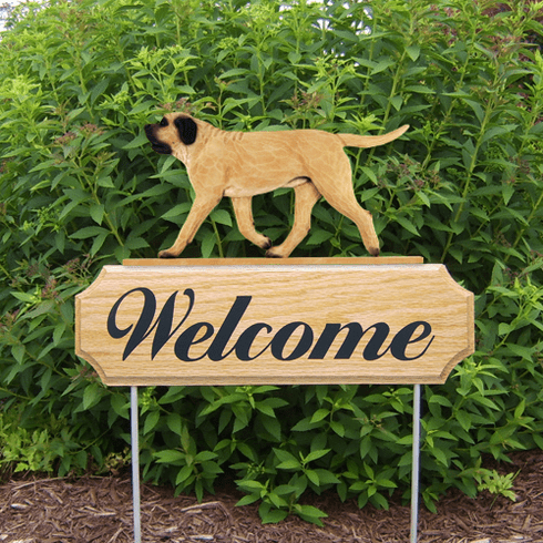 Mastiff DIG Welcome Stake-Fawn