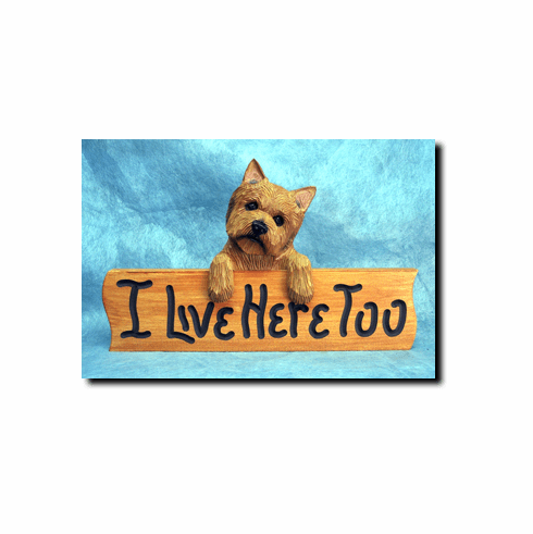 Norwich Terrier I Live Here Too Sign