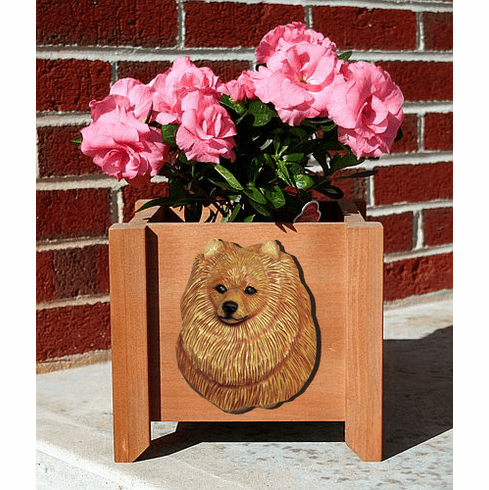 Pomeranian Planter Box