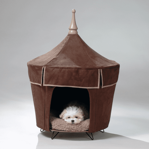 Viva Le Chocolate Pet Tent Dog Bed