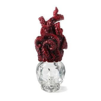 Glass Skull Bottle with Tentacle Lid