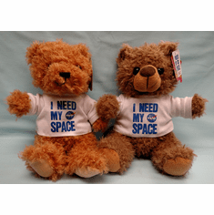I Need My Space Teddy Bear