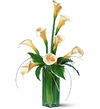 Aniversary White Callas Flowers bouquet