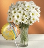 "Daisy Bouquet to say ""Get Well"""