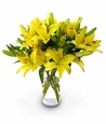 Easter Flower Gifts