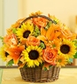 Fields of Europe� for Fall Basket