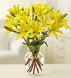 Lilies - Arranged in a Vase