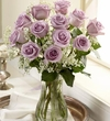 One Dozen Long Stem Purple Roses