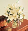 Perfect White Lilies