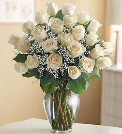 Premium Long Stem White Roses
